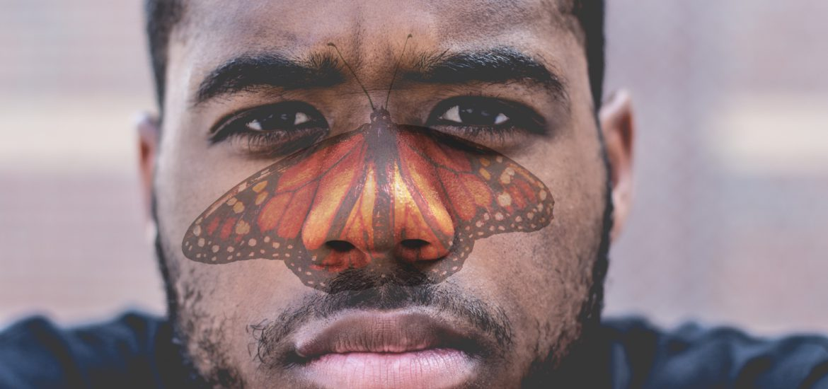 butterfly-fash-lupus