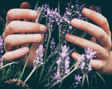aromatherapy-essential-oils-lupuscorner-cover