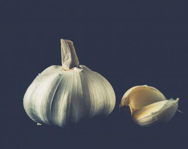 lupus-garlic-header