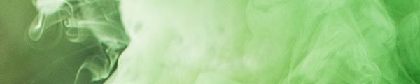 air quality-lupus-lupuscorner-lungs-divider1